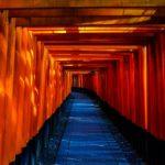 Blue and Orange Wooden Pathway