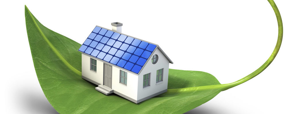 4 ways to make your home more environmentally friendly