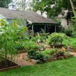 3 Hobbies That Can Make You a Better Gardener