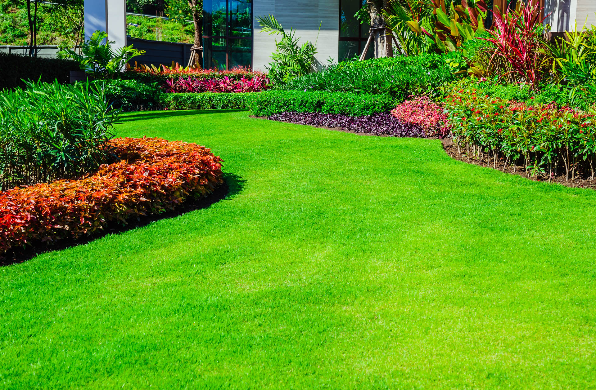 lawn-care 1.jpg