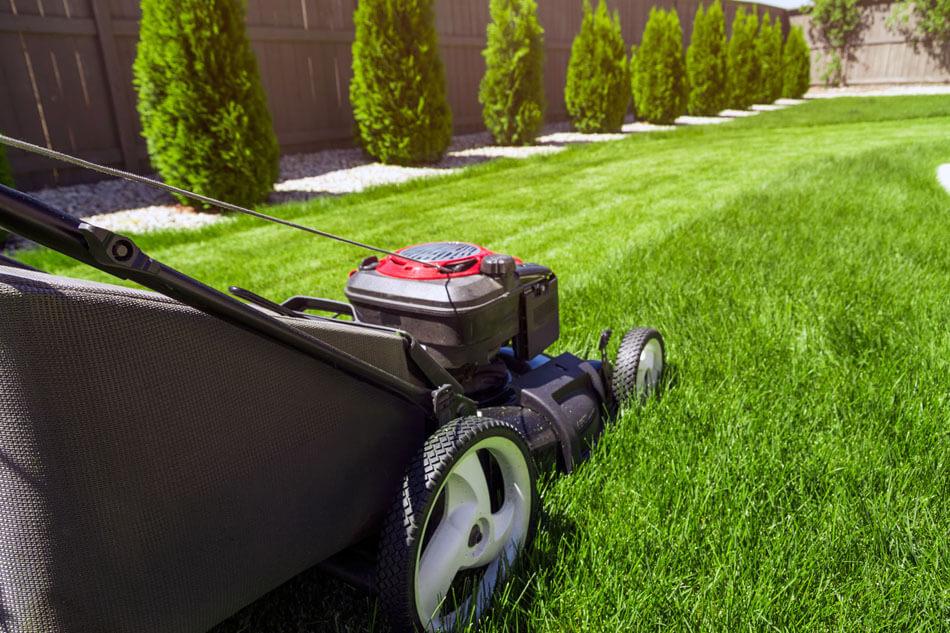 Lawn-Care.jpg